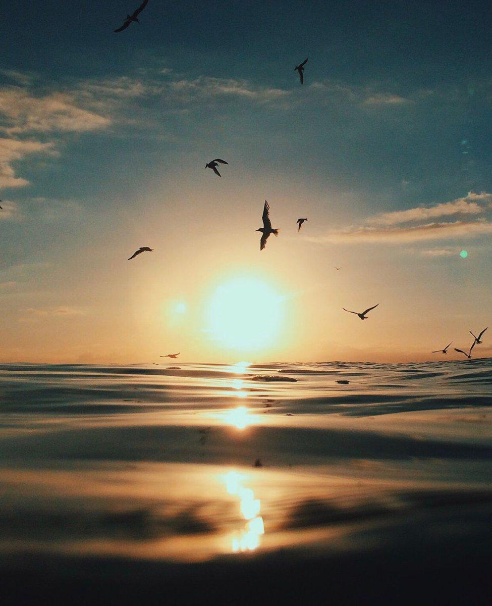 Θάλασσα: Το καλύτερο φάρμακο για την ψυχική σου υγεία